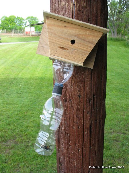 Carpenter Bee Traps AlpacaBytes Dutch Hollow Acres