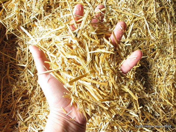 Shredded Straw