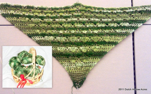 Fan Pattern Shawl